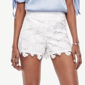 Ann Taylor White Lace Shorts